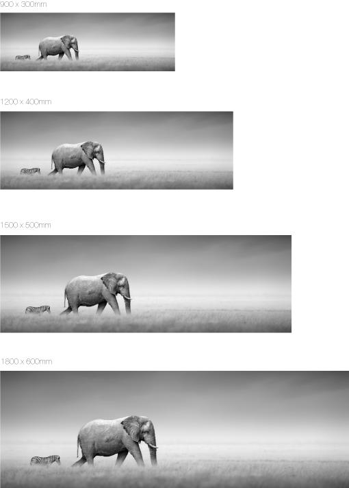 Beispielbilder formatsbezogen
